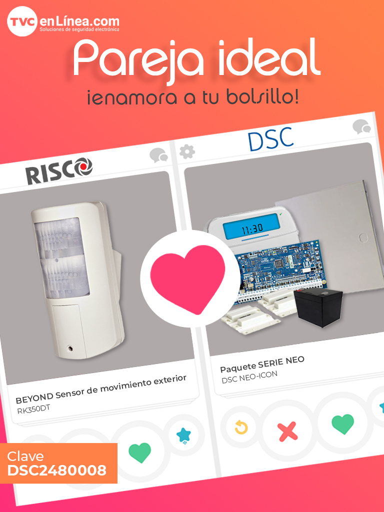 DSC2480008