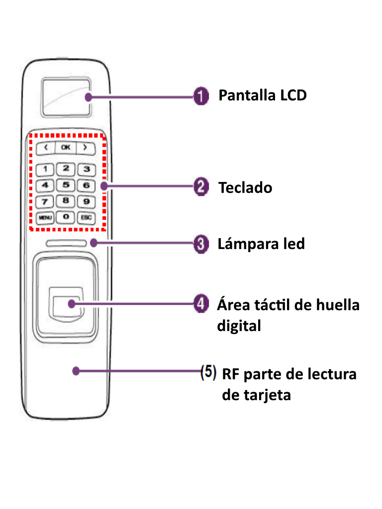 ARD-FPLN-OC.3
